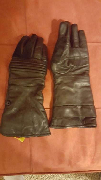 Wampa Gloves.jpg